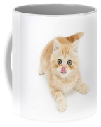Ginger Kitten With Tongue Out Coffee Mug