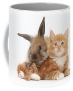 Ginger Kitten Young Lionhead-lop Rabbit Coffee Mug