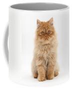 Ginger Persian Kitten Coffee Mug