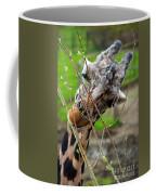 Giraffe Eating Coffee Mug