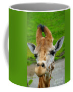 Giraffe In The Park Coffee Mug
