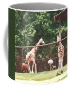 Giraffes Coffee Mug