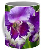 Gladiola Blossom 2 Coffee Mug