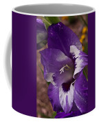 Gladiola Blossom 5 Coffee Mug