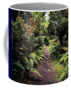 Glanleam, Co Kerry, Ireland Path In The Coffee Mug