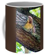 Glare Coffee Mug