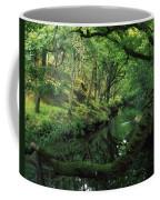 Glengarriff River, County Cork, Ireland Coffee Mug