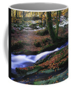 Glenmacnass Waterfall, Co Wicklow Coffee Mug