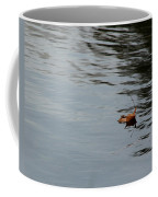 Gliding Across The Pond Coffee Mug