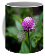 Globe Amaranth Bicolor Rose Coffee Mug