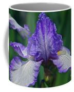 Glorious Iris Coffee Mug