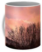 Glow Of A Winter Sunset Coffee Mug