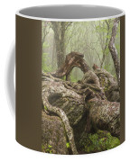 Gnarly Old Tree In Fog Along The Blue Ridge Parkway Coffee Mug by Bill Swindaman