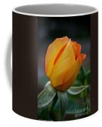 Gold Medal Bud Coffee Mug
