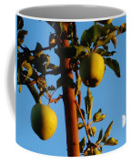 Golden Apples Coffee Mug