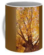 Golden Autumn View Coffee Mug