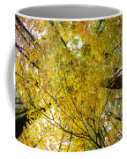 Golden Canopy Coffee Mug by Rick Berk