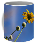 Golden Daisy On Blue Coffee Mug