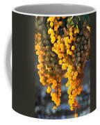 Golden Grapes Coffee Mug by Elaine Plesser