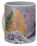 Golden Poplar Among The Rocks At Johnsons Shut Ins State Park Coffee Mug