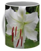 Golden Rayed  Lily Coffee Mug