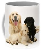 Golden Retriever And Puppies Coffee Mug by Jane Burton