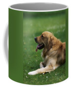 Golden Retriever Dog Laying In The Grass Coffee Mug