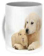 Golden Retriever Pup And Yellow Guinea Coffee Mug by Mark Taylor