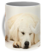 Golden Retriever With Two Kittens Coffee Mug