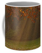 Golden Sunbeams Coffee Mug