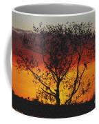 Golden Sunset Over Circle B Bar Sandstone Coffee Mug