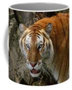 Golden Tabby Bengal Tiger Coffee Mug