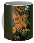 Golden Tree Moment Coffee Mug