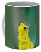 Goldenrod Visitor 3 Coffee Mug