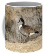 Goose Standing Still Coffee Mug