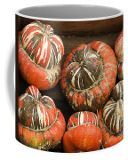 Gorgeous Gourds Coffee Mug