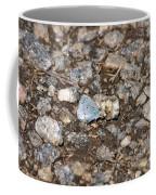 Gossamer-winged Butterfly Coffee Mug