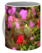 Graceful Honeyeater Coffee Mug