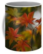 Graceful Layers Coffee Mug