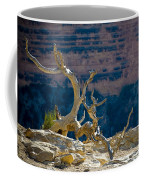 Grand Canyon Dead Tree Coffee Mug