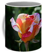 Grandiflora Coffee Mug