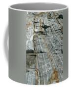 Granite With Quartz Inclusions Coffee Mug