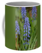 Grape Hyacinths Coffee Mug