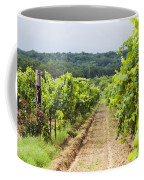 Grape Vines At Fall Creek Vineyards Coffee Mug by James Forte