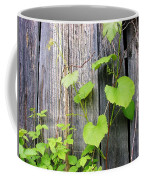 Grape Vines On An Old Barn Coffee Mug
