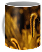 Grass In Golden Light Coffee Mug