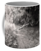 Grass Over Dirt Road Coffee Mug