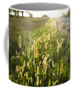 Grasses On A Nebraska Farm Coffee Mug