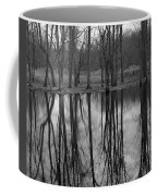 Gray Day Reflections Coffee Mug