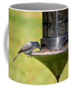 Gray Feathered Coffee Mug
